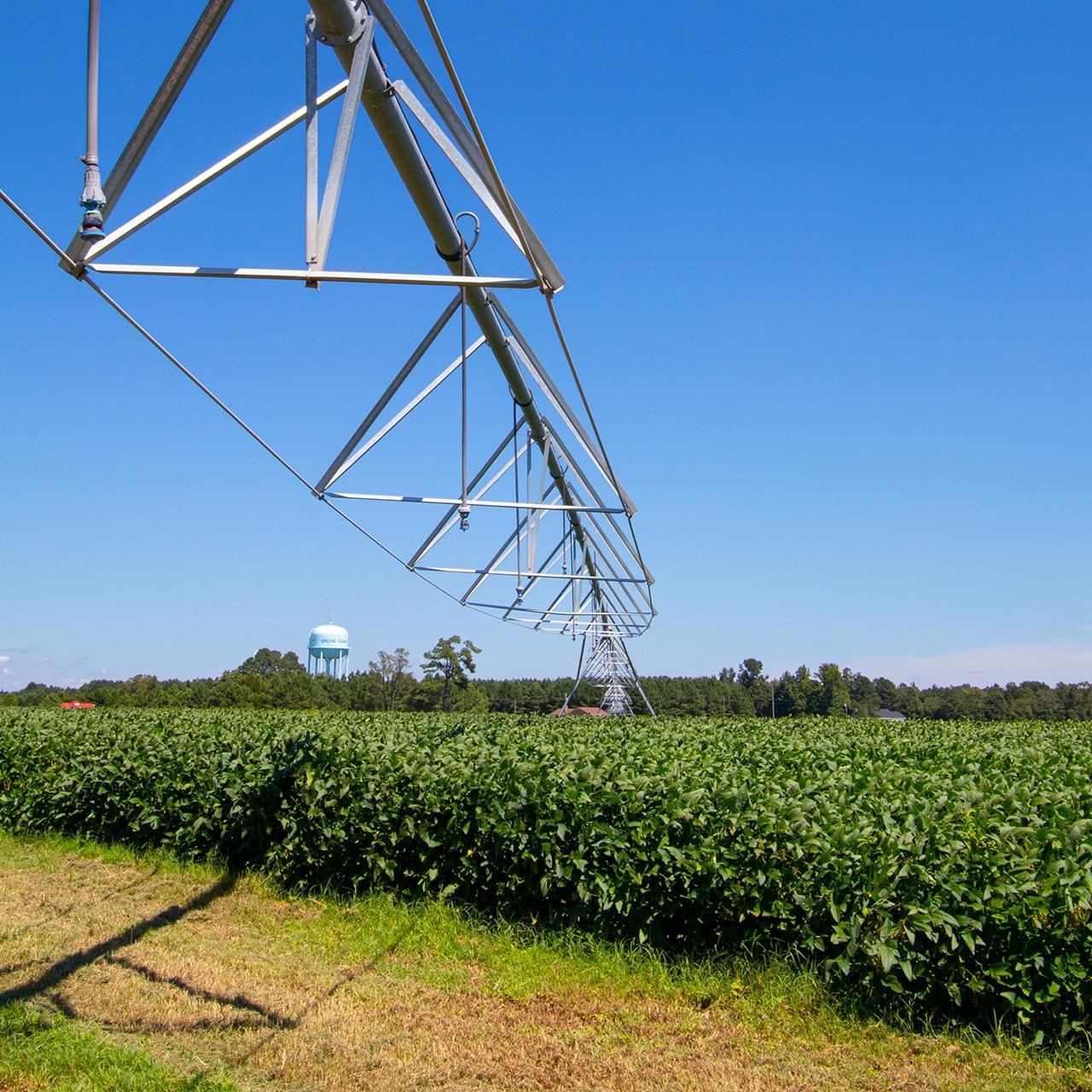 Systeme D Irrigation Dans Un Champ