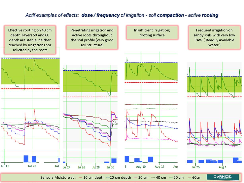 Corhize Aquacheck 3 Key Situations Doses Examples Anglais