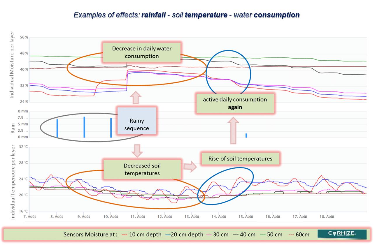 Corhize Aquacheck 3 Key Situations Temperature Effects Anglais